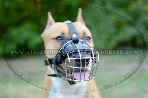 Extra-Strong Wire Basket Amstaff Dog Muzzle For Training