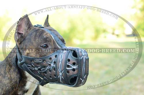 Super Leather Amstaff Dog Muzzle For Attack Training