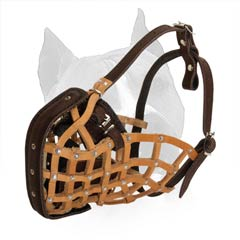 Modernized Basket Muzzle For Training of Amstaff Dog  Breed