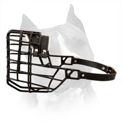 Our Best-Selling Wire Basket Dog Muzzle