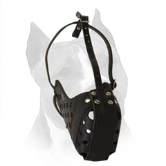 Tired Of The Same Old Story With Dog Chewing? Change It. Buy This Muzzle.