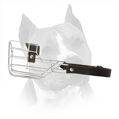 Walk Your Pet With Muzzle On. You WIll See More Smiles...
