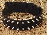 Black Nylon Spike Dog Collar- 2 Rows of spikes
