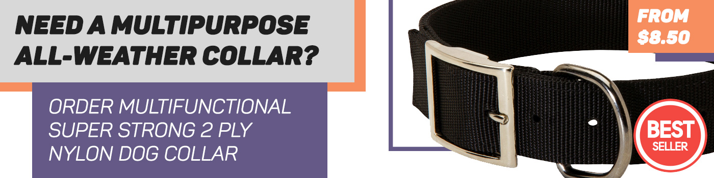 Durable All Weather Nylon Dog Collar For Amstaff