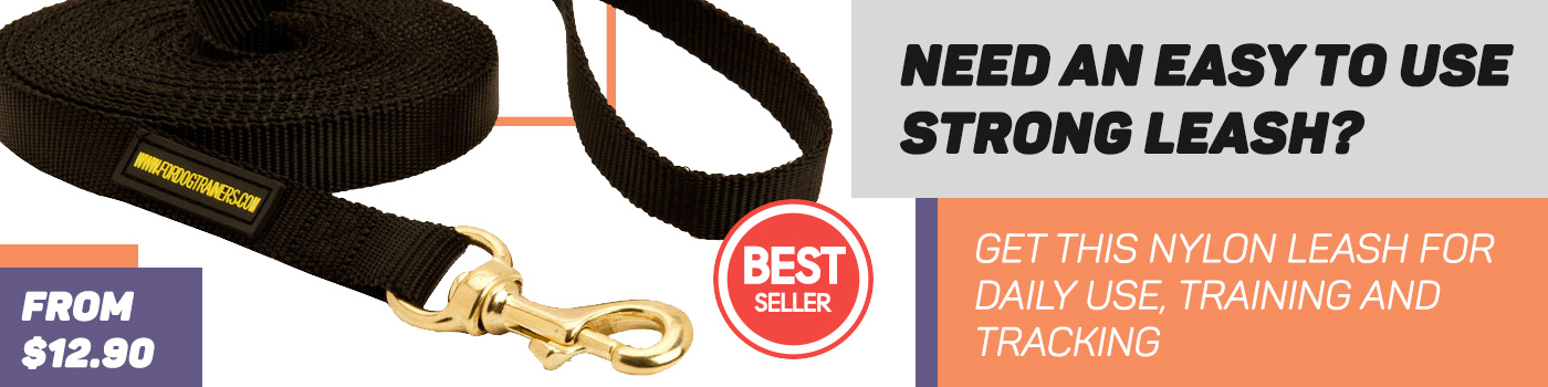 Nylon Dog Leash For Training, Tracking And Walking Your Amstaff