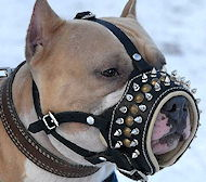 Our Best-Selling Royal Spiked Leather Dog Muzzle