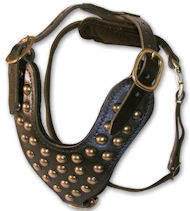 Stud Dog Harness for Amstaff -2 ply leather HARNESS